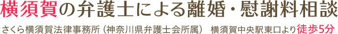 横須賀の弁護士による離婚・慰謝料相談 さくら横須賀法律事務所(神奈川県弁護士会所属) 横須賀中央駅東口より徒歩5分